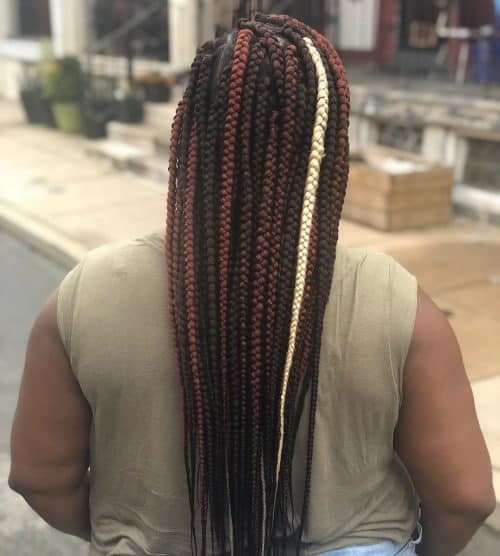 15 Blonde Box Braids That are Straight Fire